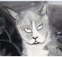 Cat Head Grey Photographic Print