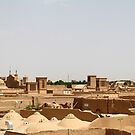 Adobe Roof Tops, Yazd, Iran by Jane McDougall