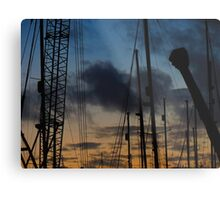 #crane Metal Print