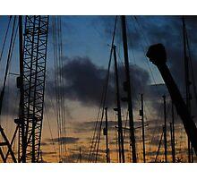 #crane Photographic Print