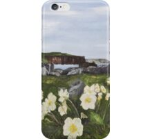 Cliffs of Moher from Doolin Co. Clare Ireland iPhone Case/Skin