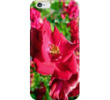 just cant last.... iPhone Case/Skin