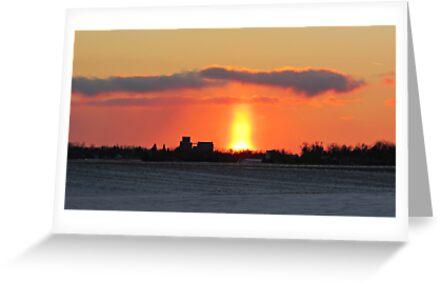 Prairie Geyser by Greg Belfrage