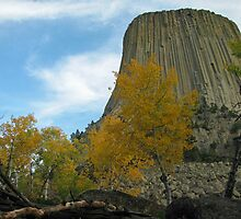 Fall at Devils Tower by Jens  Larsen