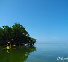Kayaking In The Keys by Jens  Larsen