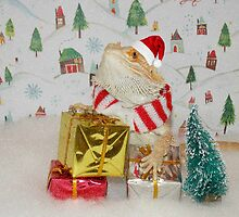 Santa Dragon  by Skymall007