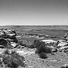 Canyonlands - The Grand View by Bill Wetmore