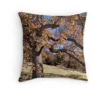 Copperopolis Oak Throw Pillow