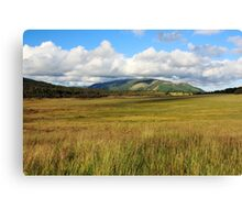 Swamped by the sky Canvas Print