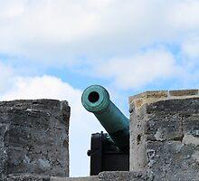 Cannon by Bob Hardy