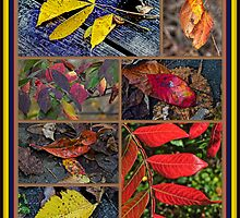 Autumn Leaves Come Tumbling Down by MotherNature