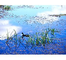 Sky reflection Photographic Print