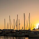 Sunrise on the marina by David Gallagher