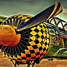 Warbird by wallarooimages