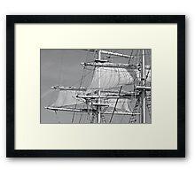 White Sails Framed Print
