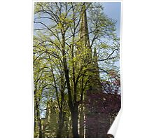 Episcopal Cathedral in Edinburgh visible through trees Poster