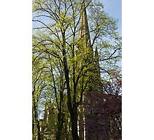 Episcopal Cathedral in Edinburgh visible through trees Photographic Print