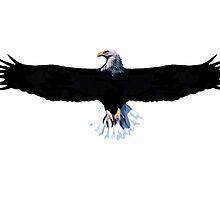 Bald eagle, modification by sebmcnulty