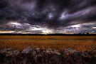 Sun Rays at Bowsden by Nigel Bangert