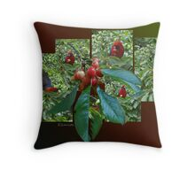 The Cherry Thief Throw Pillow