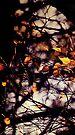 Autumn I by Anne Staub