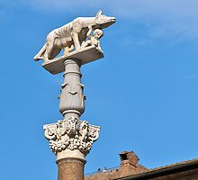 Siena, Statue of Wolfe with Romulus and Remus, Toscana, Italy by Frank Schneider