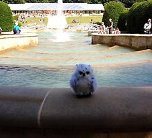 Owl's adventure at Alnwick Gardens by Beth McConnell