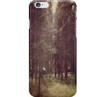The cabin iPhone Case/Skin