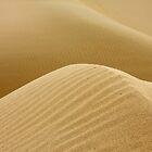 Yuma Dunes #2 by Alex Rentzis
