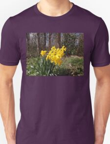 Yellow Daffodils Unisex T-Shirt