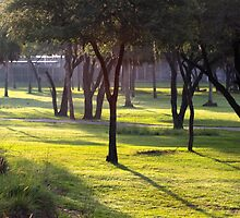 Morning in Africa by AtDisneyAgain