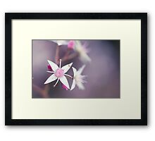 Gently Does It Framed Print