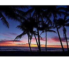 Palm City Photographic Print