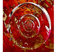 Bullseye!! Photographic Print