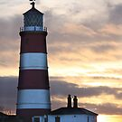 The Lighthouse by Mark Poulton