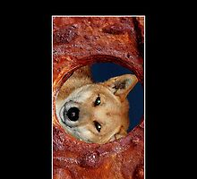 Fraser Island Dingo Cellphone Cover Case 51 by Gotcha29