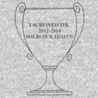 I SURVIVED THE SHERLOCK HIATUS by PotionOwl203