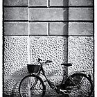 Push Bike , Verona Italy by David J Baster