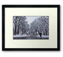 After the Ice Storm--Beautiful But Destructive Ice and Snow Framed Print