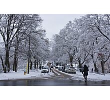 After the Ice Storm--Beautiful But Destructive Ice and Snow Photographic Print