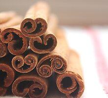 Cinnamon. by Tania Chatterjee