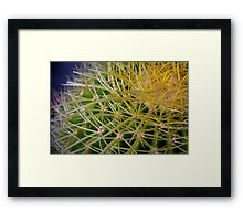 Ribbon Cactus Framed Print