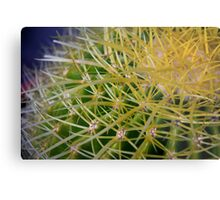 Ribbon Cactus Metal Print