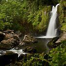 Lower Liduduhniap Falls - Pohnpei, Micronesia by Alex Zuccarelli