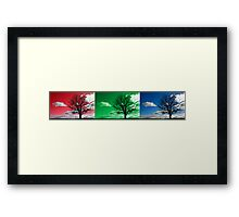 Tri scene silhouette landscape Framed Print