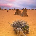 Pinnacles Solitude by ImagesbyDi