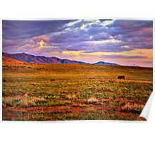 Sunset Pasture Poster