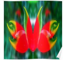 red & green in symmetry  Poster