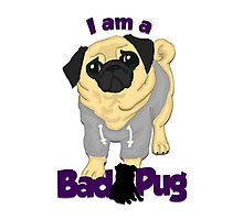 I am a Bad Pug Photographic Print