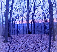 Sunset from the Knob by TrendleEllwood